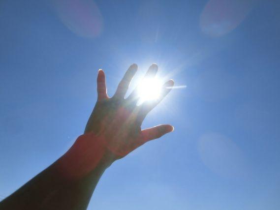 太陽に向かって伸ばす手